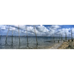 Oyster farms in the Bay of Arcachon