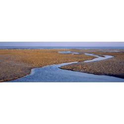 Inlet in Camargue